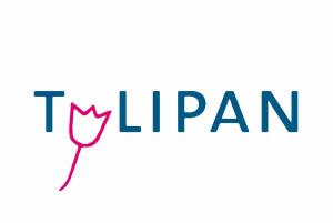Tulipan-Logo-bunt